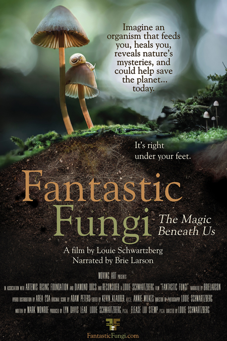 Fantastic Fungi Q A Film Times And Info Showcase Originally featured in the clone wars animated series i made. fantastic fungi q a film times and